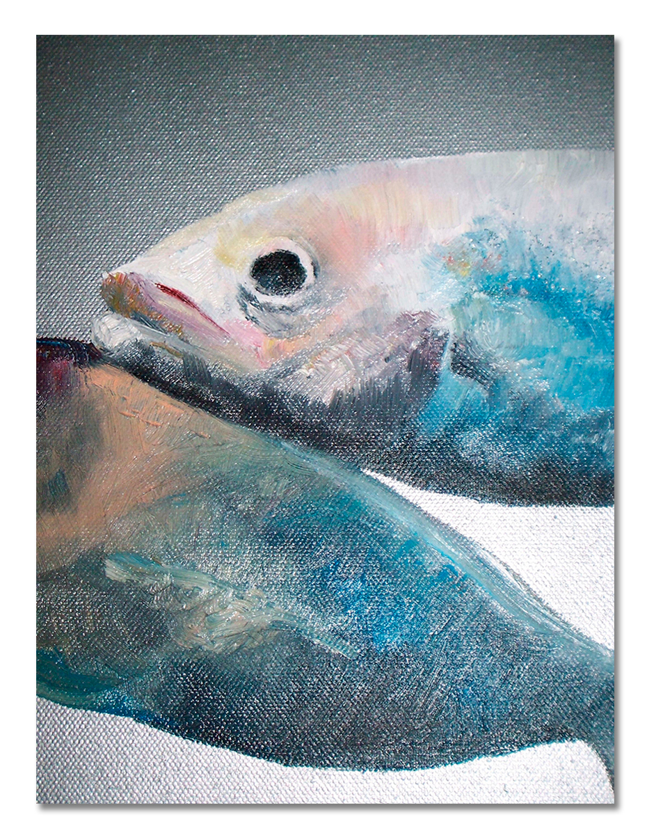 dieren-vis-karin-neijenhuis-w